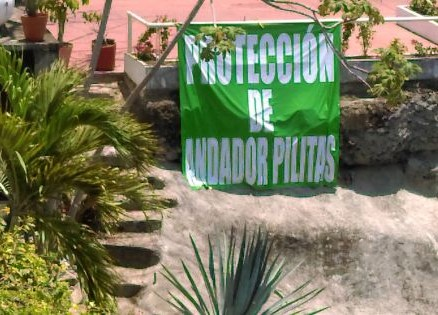 SIGN THE PETITION: Save the Pilitas Stairs!